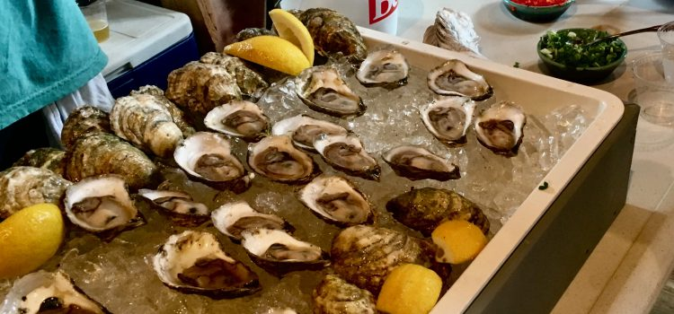 A Day at the Damariscotta River Oyster Celebration