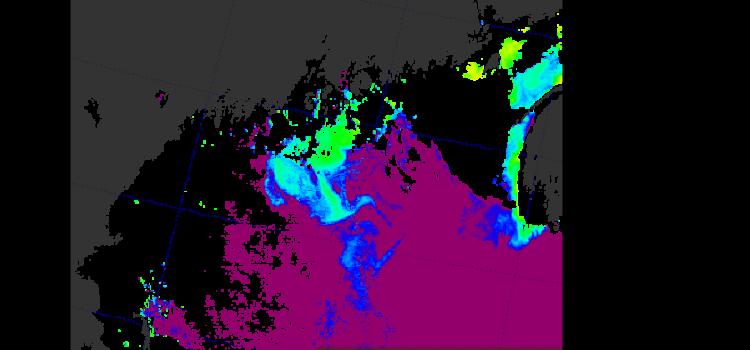 Ocean Color Satellites