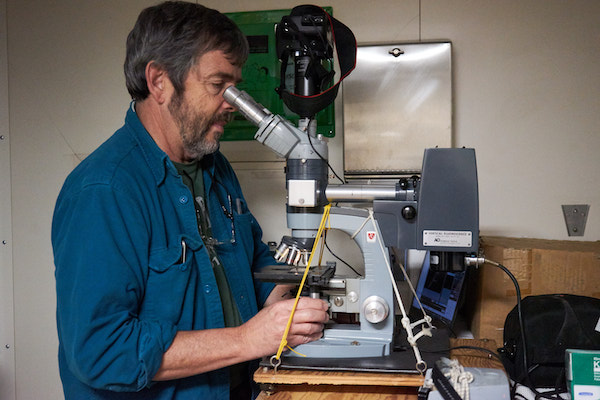 A man with dark hair and a beard is looking into a large microscope. There is a camera mounted on top of the microscope and he is adjusting the focus knobs.